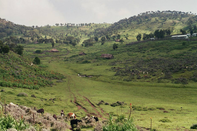 Bale Mountains are an Ethiopia tourism destination